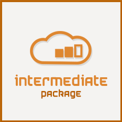 Cloud Data Solutions Intermediate Package